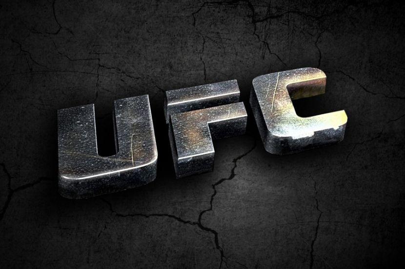 UFC Fight Night 176: все результаты
